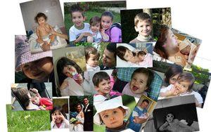 Evy family